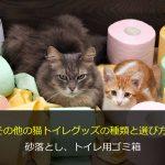その他の猫トイレグッズの種類と選び方-砂落とし、トイレ用ゴミ箱