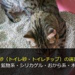 猫砂(トイレ砂・トイレチップ)の選び方-紙・鉱物系・シリカゲル・おから系・木材系