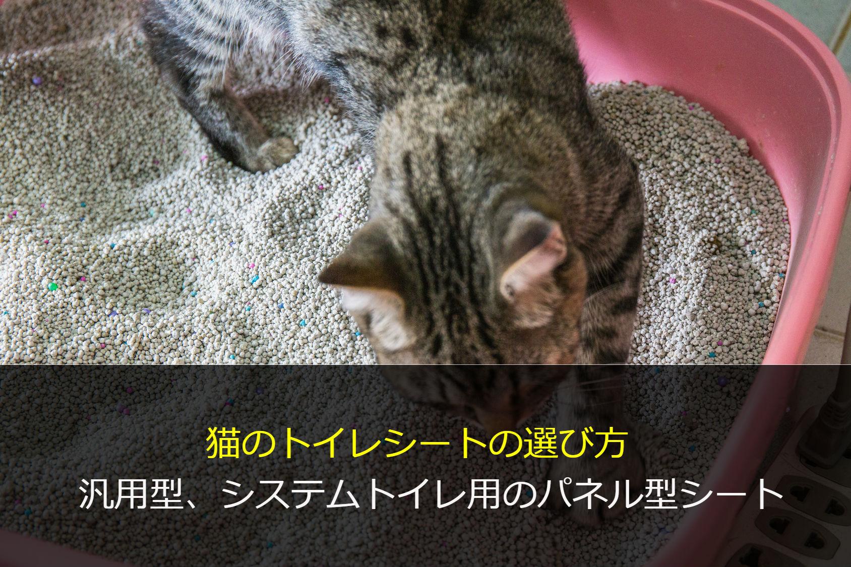 猫のトイレシート選び方