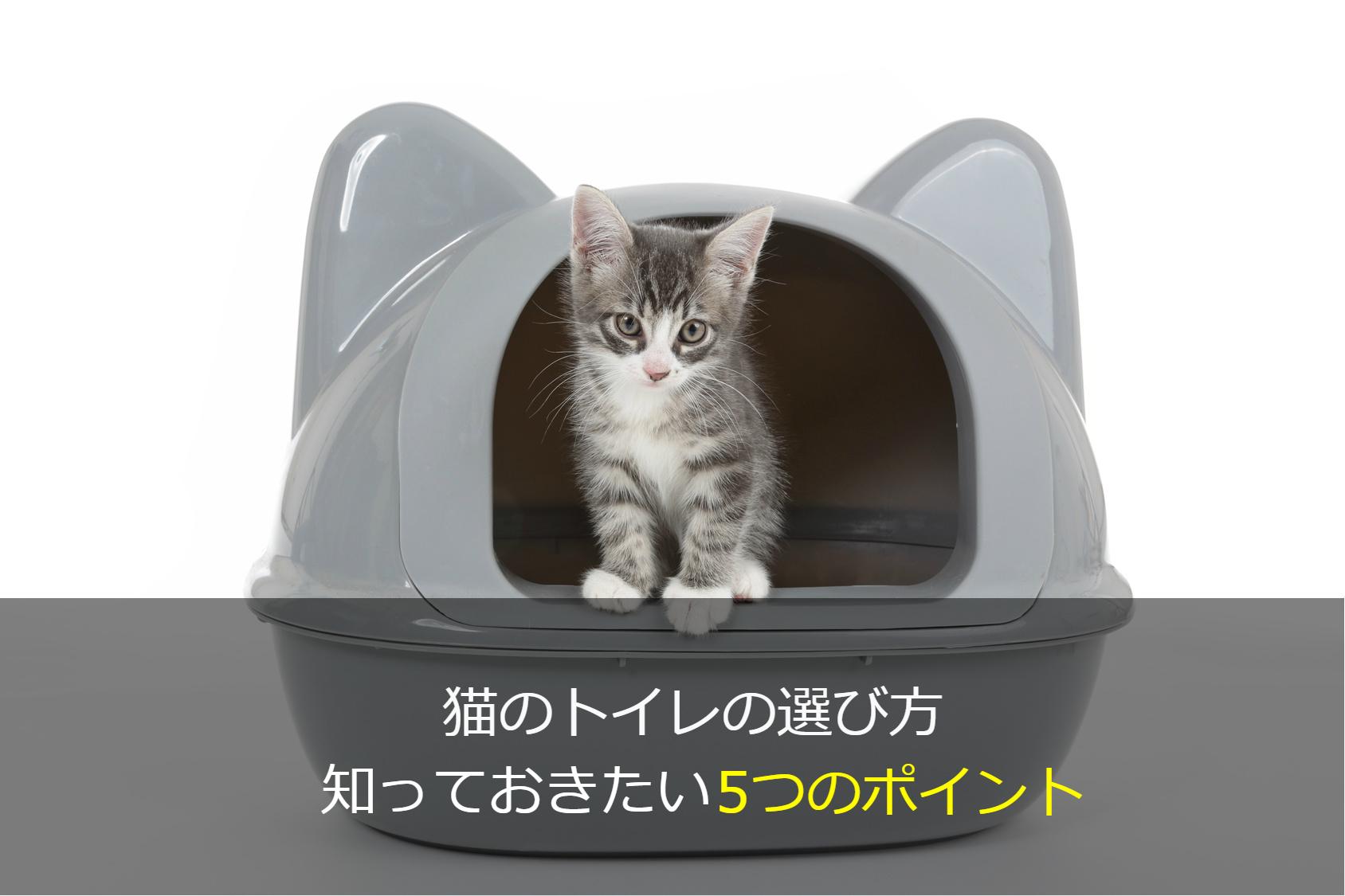 猫のトイレの選び方